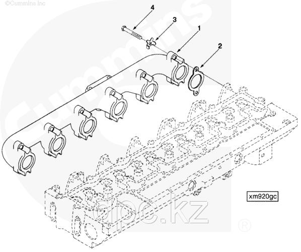 Подкладка выпускного коллектора Cummins C245-20 3929012 3921787