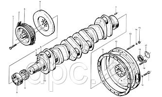Шестерня коленчатого вала Weichai WD615  614020038