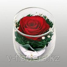 Вечный цветок в Алматы SSR
