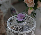 Живые цветы в стекле SSO, фото 3