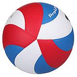 Мяч волейбольный Gala Pro-Line FIVB, фото 2
