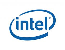 879062 Батарея резервного питания (BBU) Intel AXXRBBU1 RAID Smart Battery для SRCZCRX, SRCU42X