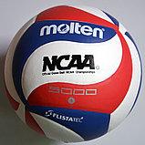 Мяч волейбольный Molten NCAA 5000, фото 5