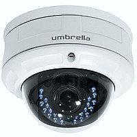 Антивандальная Мегапиксельная IP камера Umbrella N316