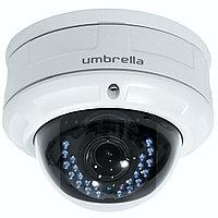 Антивандальная Мегапиксельная IP камера Umbrella D318