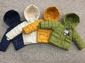 Куртки Roberto Cavalli
