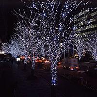 Гирлянда на деревья 25 м, фото 1
