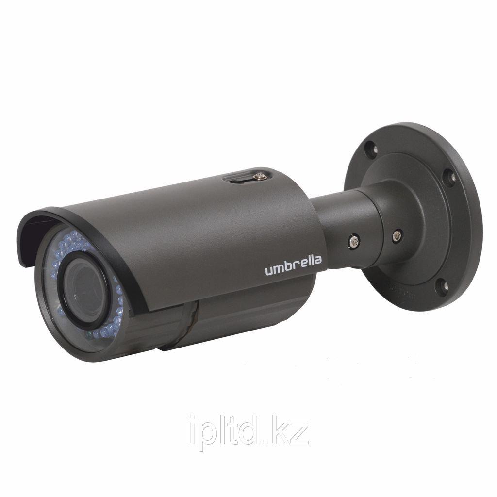 Антивандальная Мегапиксельная IP камера Umbrella X416
