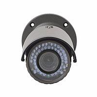 Антивандальная Мегапиксельная IP камера Umbrella X417