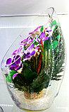 Цветы в колбе ArLO, фото 2