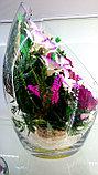 Цветы в колбе ArLM3, фото 2