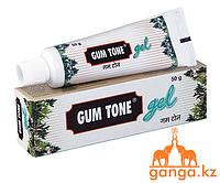 Гам-тон гель аюрведическая зубная паста (Gum tone gel CHARAK), 50гр