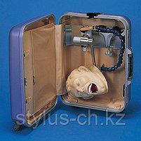 Симулятор рентгенографии полости рта, фото 2