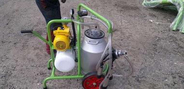 Доильный аппарат 1 пульсатор 1 бидон (Турция)