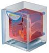 Лабораторные термостаты INCUCELL