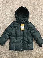 Куртки Gucci , фото 1