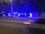 Подсветка деревьев, кустов. Обмотка, освещение деревьев светодиодной лентой, дюралайтом, фото 2