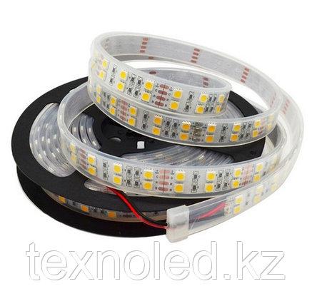 Светодиодная лента Led 5050 12v/120led(самая яркая), фото 2