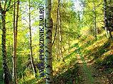 Отдых на природе в г. Алматы, фото 8