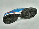 Обувь для футбола, сороконожки Adidas Predator SL, голубые, фото 2