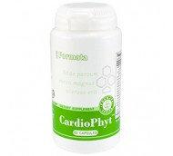 КардиоФит, витамины для сердца, коэнзим Q10, L-карнитин, гинкго билоба, боярышник, 60 капсул.