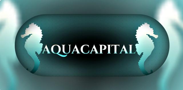 Интернет-магазин «AQUA CAPITAL»