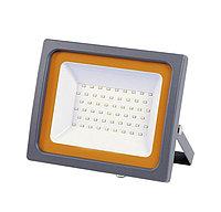 Прожектор PFL -SC 20Вт IP65 мат. стекло Jazzway