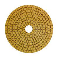 Алмазный шлифовальный круг #100  (черепашка)