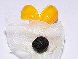 Пилюля из женьшеня и пантов для укрепления почек, 32 пилюли, фото 2