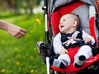 Товары для прогулок с детьми
