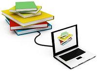 Установка и сопровождение программы для сдачи стат. отчетности ИС ЭСО , фото 1