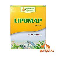 Липомап - регулятор холестерина и уровня липидов (Lipomap MAHARISHI AYURVERA), 40 таб.