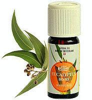 Эфирное масло Эвкалипт, натуральное, Швейцария / Evcalyptus