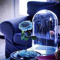 колба для розы алматы