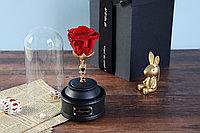 Романтичный подарок Роза в колбе