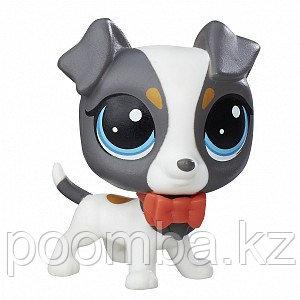 Зверюшка Littlest Pet Shop - Джек-рассел-терьер Scamps Russo