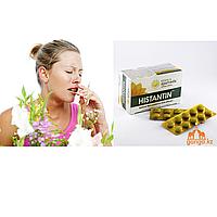 Гистантин - от аллергии (Histantin KERALA AYURVEDA), 100 таб.