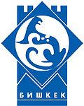 Доставка грузов Бишкек - Нур-Султан, фото 2