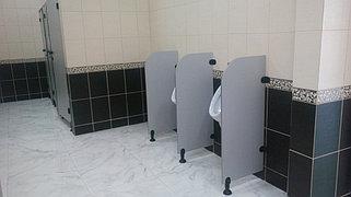 Туалетные перегородки 19