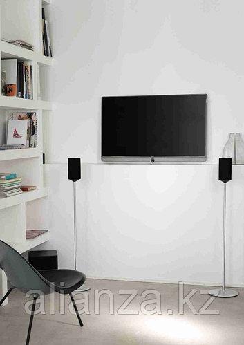 Телевизор LOEWE BILD 3.48