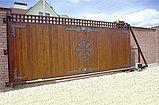 Ворота, фото 4