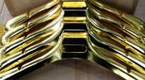 Плечики каучуковые (золото) 450 мм