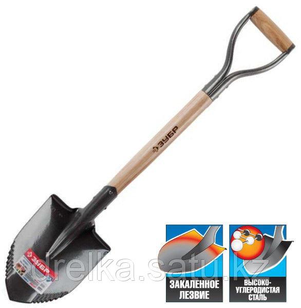 Лопата ЗУБР МАСТЕР БЕРКУТ автомобильная, деревянный черенок из ясеня, металлическая рукоятка, 228х173x800мм