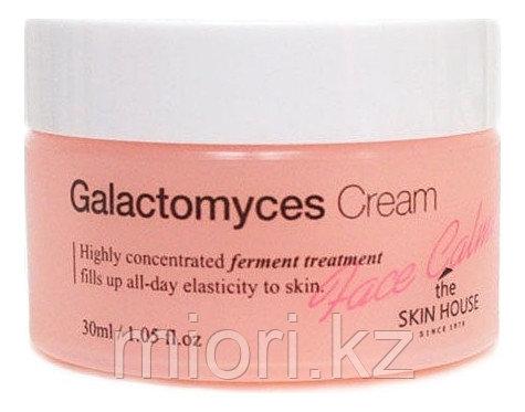 Ферментированный крем The Skin House Galactomyces Cream,30мл