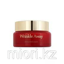 Wrinkle Away Fermented Cream [The Skin House]
