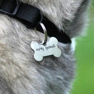 медальоны, адресники для домашних животных