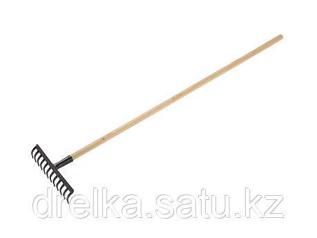 Грабли прямые ЗУБР 4-39583-12, садовые с черенком, 12 зубцов , фото 2