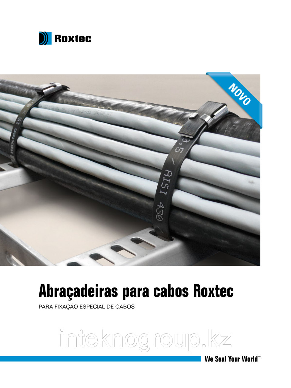 Roxtec Cable straps Strap 15x0,5 black/ss. L=700 mm