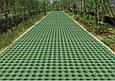 Яркий зеленый железооксидный пигмент 7703, фото 7
