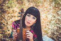 Скрипка, струнный квартет, цыг...